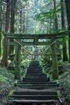 異世界すぎる!「上色見熊野座神社」で、神秘の世界にトリップしてきた│観光・旅行ガイド - ぐるたび.jpg