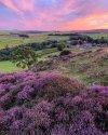 Peak District Moorlands.jpg
