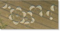 melatonin-sott-crop-circle.jpg