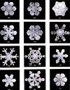 types-of-snowflakes.jpg