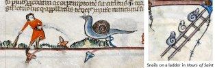 Knights x snails 30.jpg